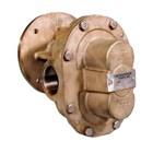 Oberdorfer Pumps N1100