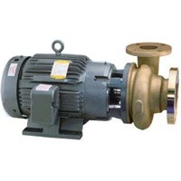 Bronze Pump